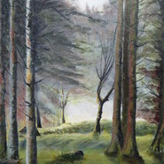 Bellever Woods, Dartmoor  SOLD