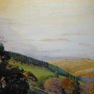 Close by Prince Hall, Dartmoor