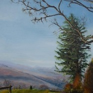 Early Morning, Dartmoor