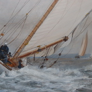 Mariquita racing at Falmouth  Not for Sale