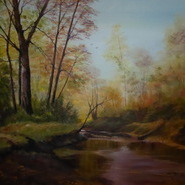 Tranquil Woodland